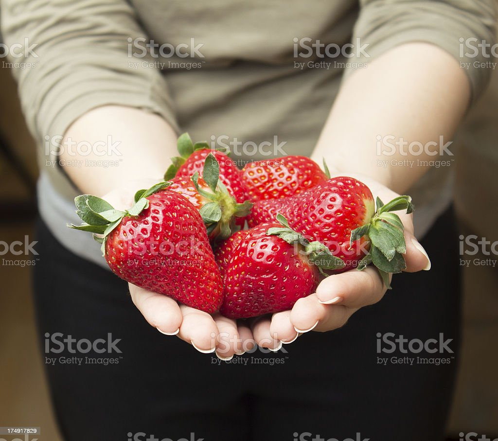 Girl hands holding strawberries royalty-free stock photo