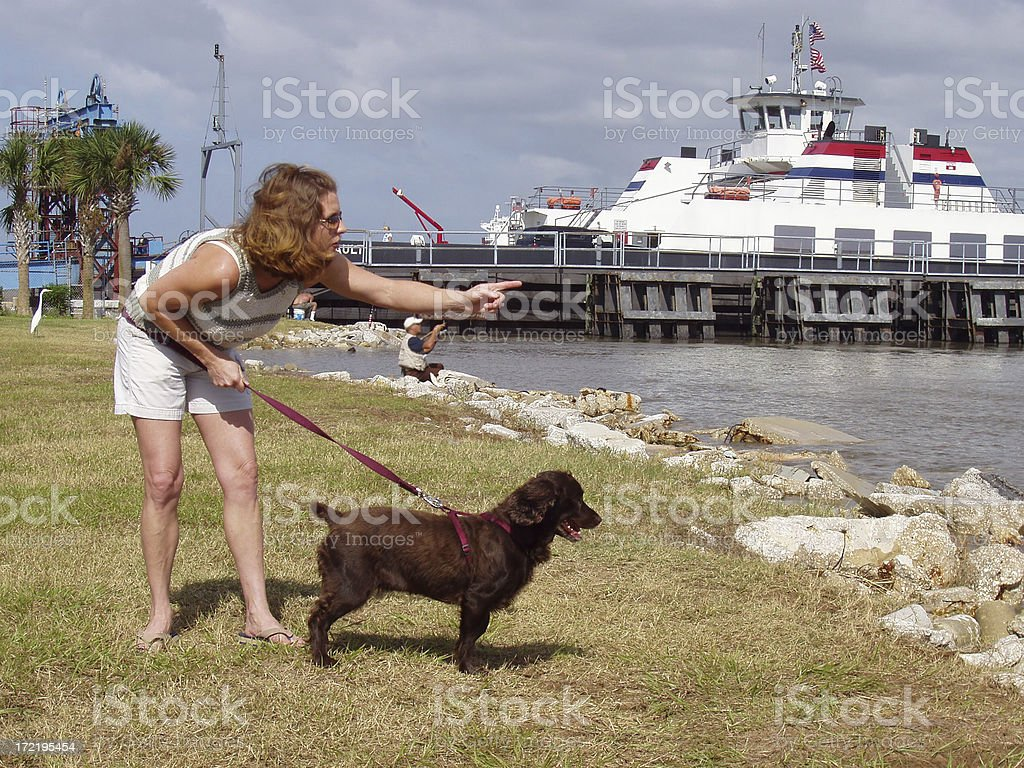 Girl & her boykin spaniel dog at the ocean - Lifestyle stock photo
