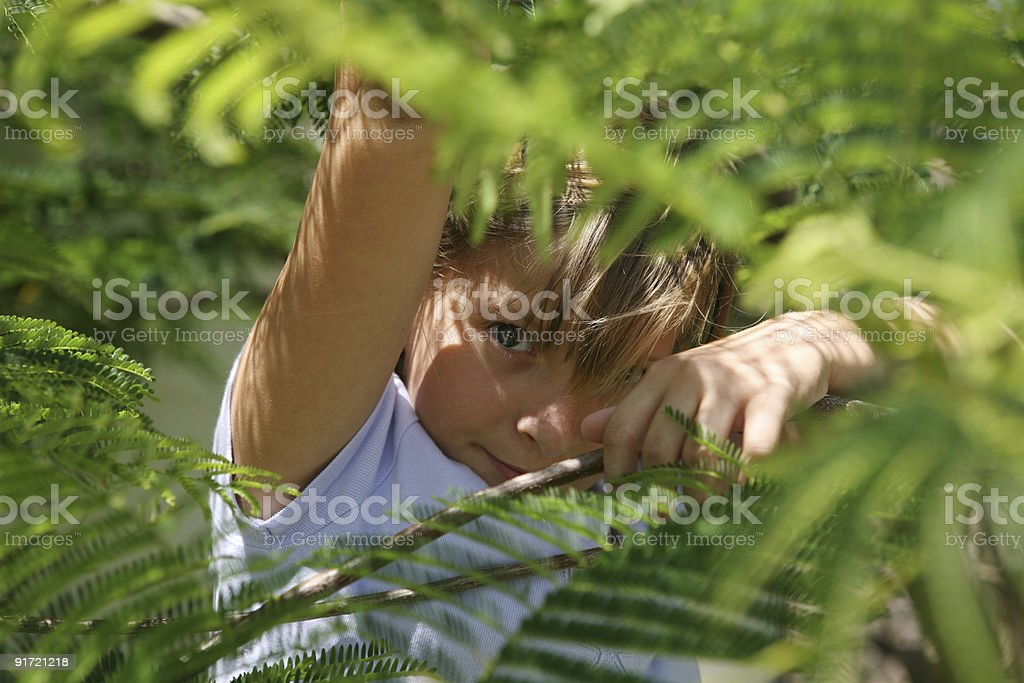 girl hiding under tree stock photo