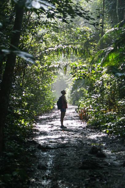 Girl Hiking in Soberania National Park in Panama stock photo