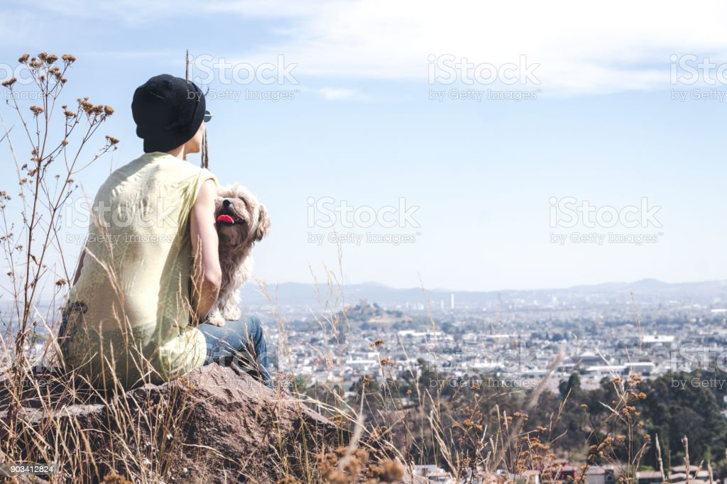 Girl hiking on a sunny day with the dogs stock photo