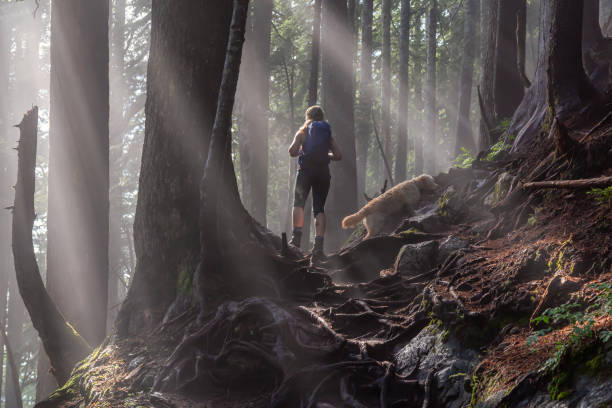Girl Hiking with a Dog up a Mountain