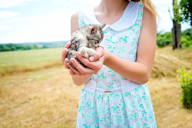 Girl holding a kitten picture id532939581?b=1&k=6&m=532939581&s=612x612&w=0&h=uu40rmlbf2 1prdwhgr eysto050afq gfv8mtgaul0=