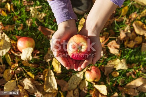 865889676 istock photo Girl holding a red apple in her hands 921910674