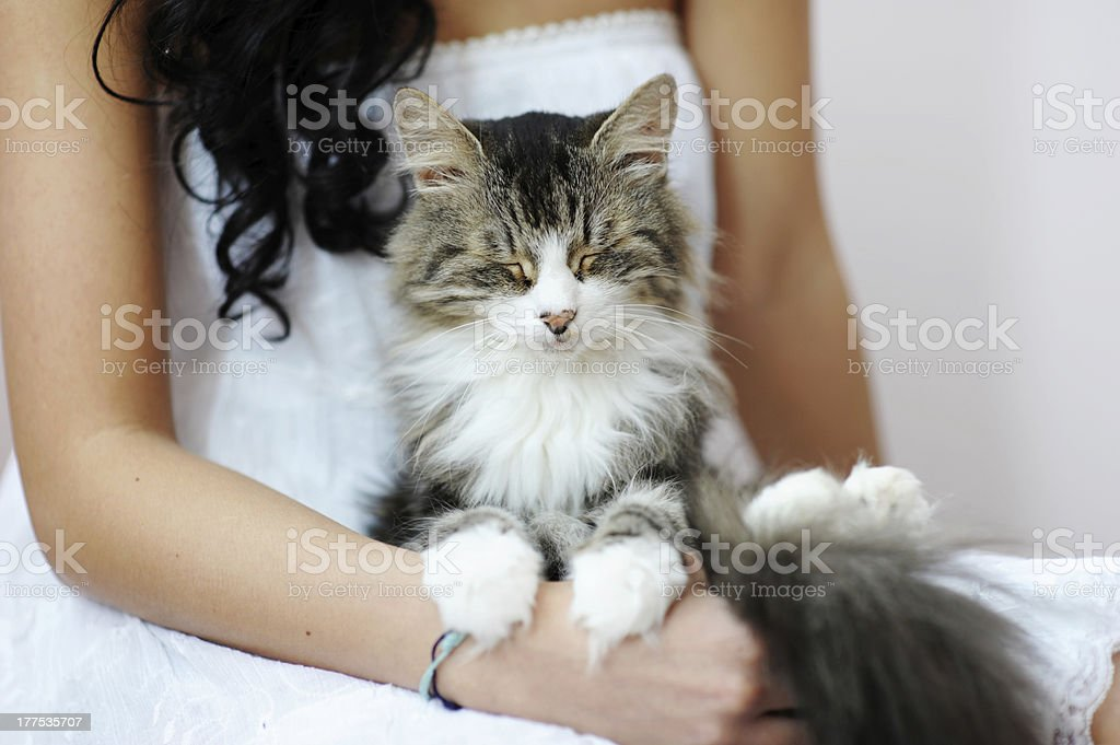 Girl holding a sleepy cat royalty-free stock photo