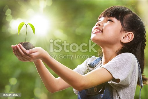istock A girl holding a young plant in her hands 1090503076