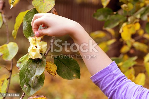 865889676 istock photo Girl holding an apple cancer 921902664