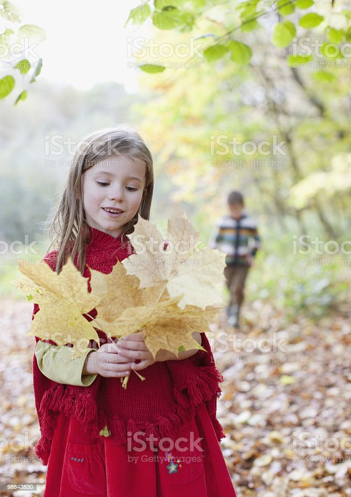 Girl holding autumn leaves royalty-free stock photo