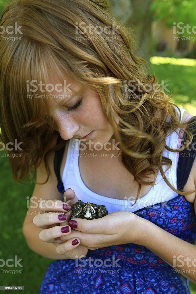 Girl Holding Baby Bird royalty-free stock photo
