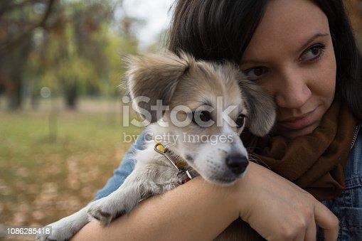 istock Girl holding cute puppy 1086285418