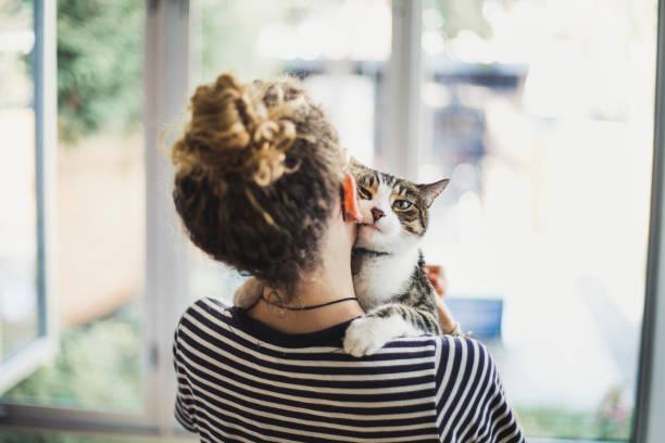 Girl holding her cat picture id854219324?b=1&k=6&m=854219324&s=612x612&w=0&h=wzvxgyglqdn8b rw 0eje8kunrw5urivhl6tddk6ma0=