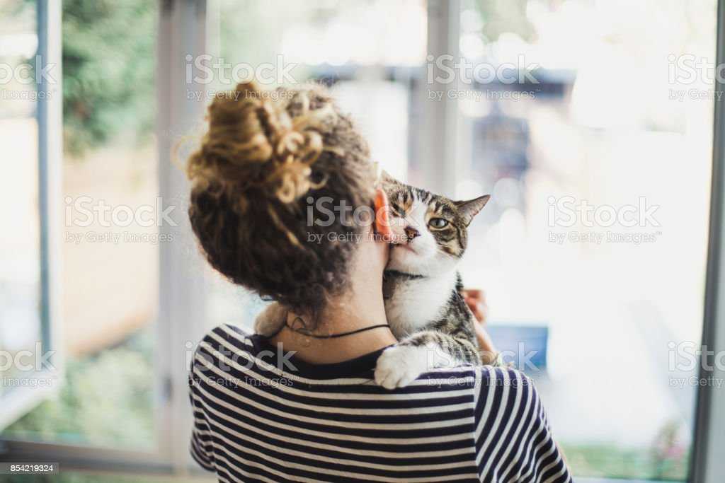 A girl holding her cat stock photo