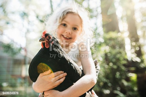 A girl holds her free range hen in his backyard.  Free range chickens not only have a more enjoyable life, their eggs are also more nutrient rich.