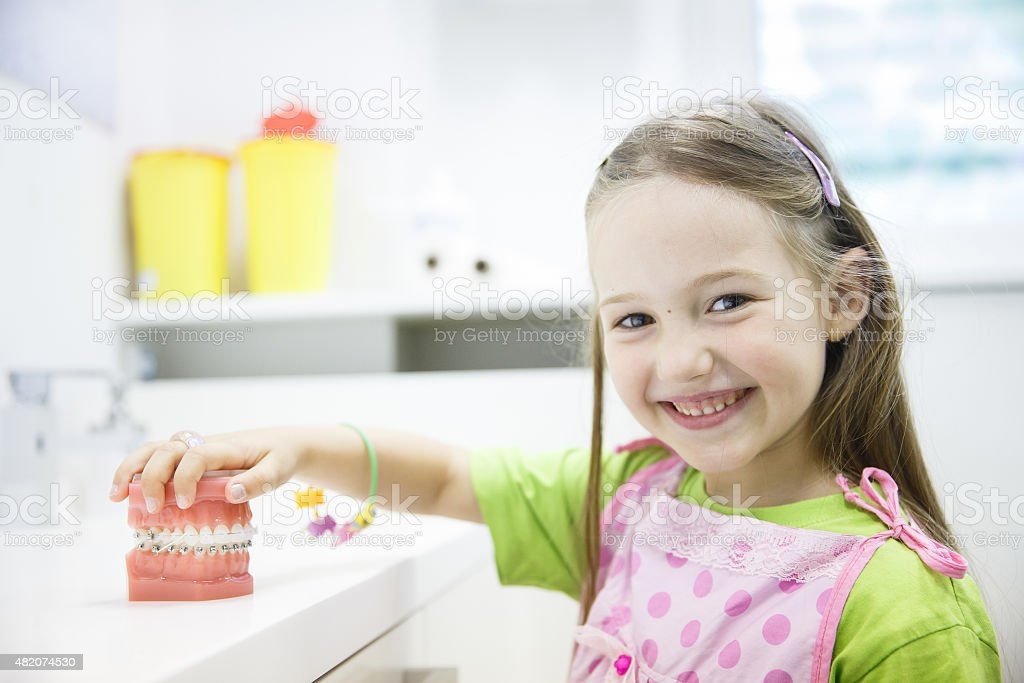 Girl holding model of human jaw with dental braces stock photo