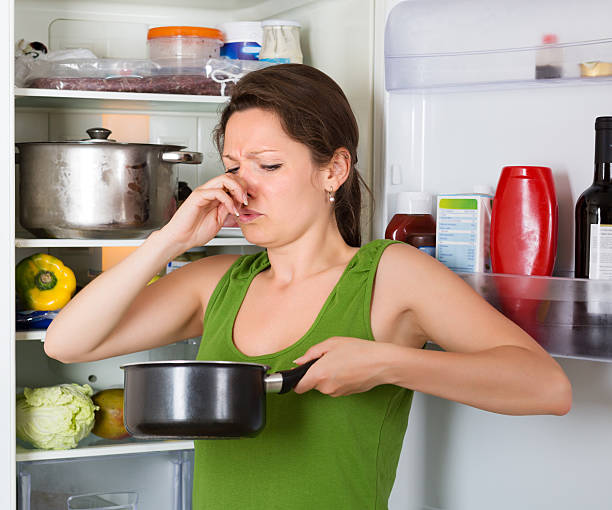 Girl holding nose near refrigerator Girl holding her nose because of bad smell from food near refrigerator  at home addle stock pictures, royalty-free photos & images