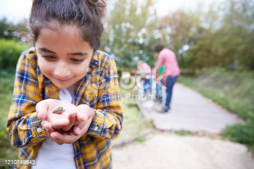 Girl Holding Small Frog As Group Of Children On Outdoor Activity Camp Catch And Study Pond Life