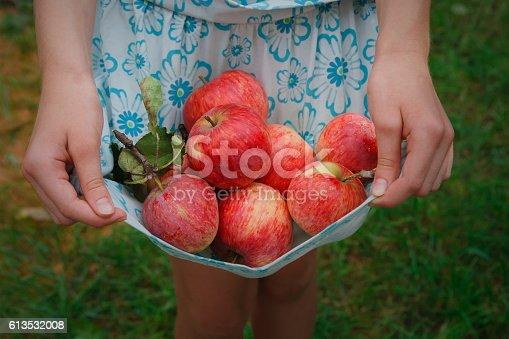 istock Girl holds apples in skirt hemline 613532008