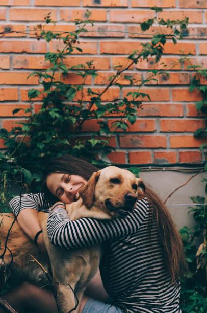 fille embrassant chien - canidés photos et images de collection