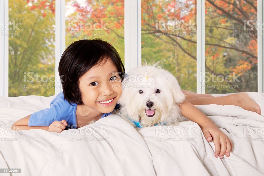 Girl hugging her puppy on the bed royalty-free stock photo