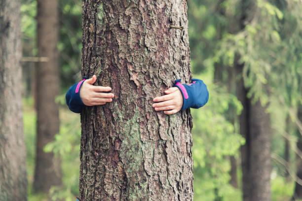 girl hugs a tree - лесистая местность стоковые фото и изображения