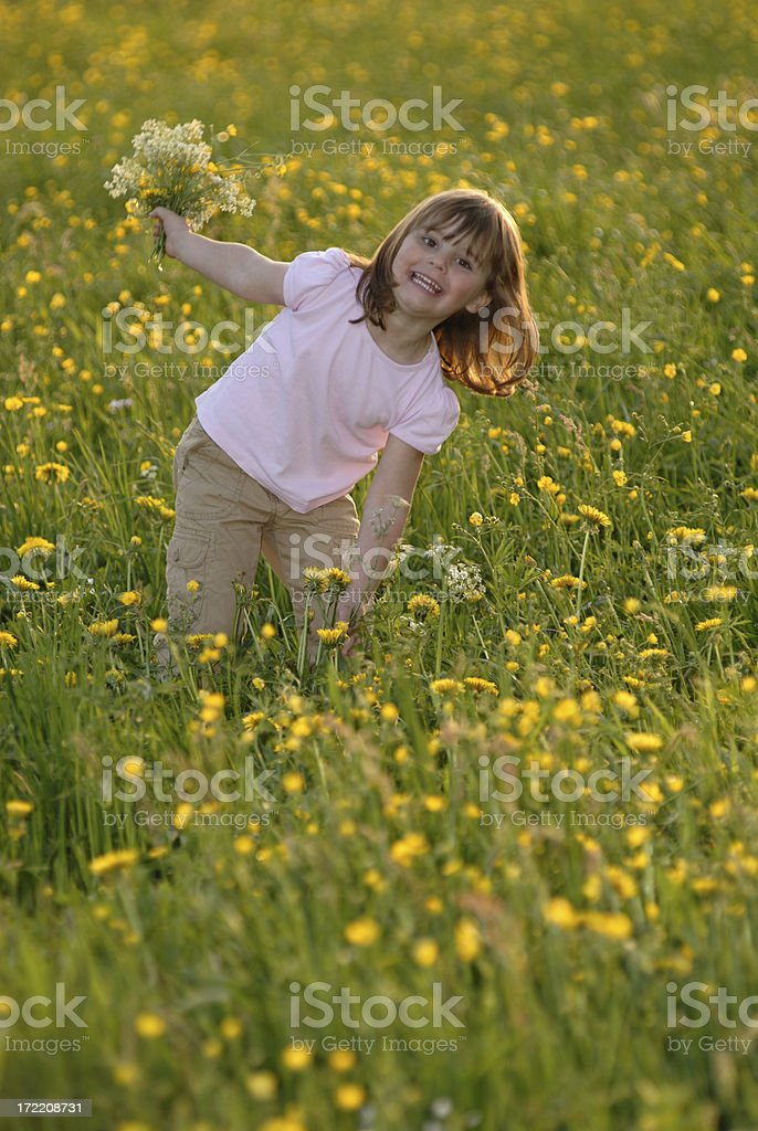 girl in a blooming meadow royalty-free stock photo