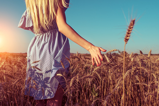A girl in a dress, stands in the summer in a wheat field, walks in nature, hand touches spikelets of wheat, free space for text, a woman has a rest in nature, a farm and spikelets of wheat.