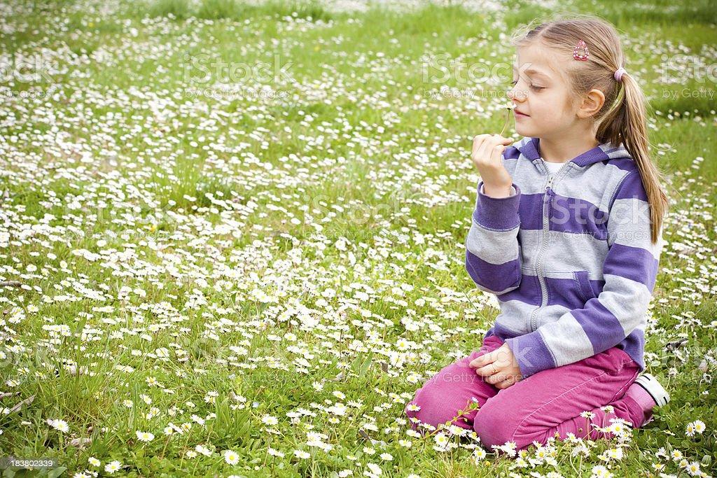 Mädchen in einem Feld mit Gänseblümchen – Foto