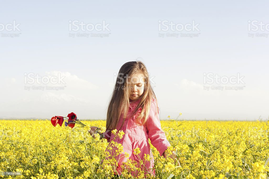 girl in a field royalty-free stock photo