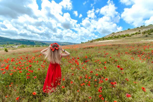 ein mädchen in einem roten kleid webt kränze von mohnblumen in einem mohnfeld. - hippie kostüm damen stock-fotos und bilder