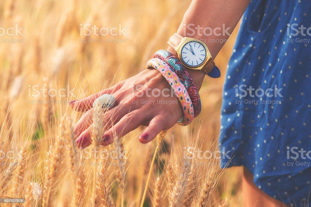 Girl in a wheat-field. stock photo