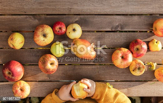 865889676 istock photo Girl in an orchard collecting apples and pears 921957302