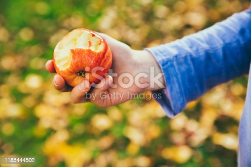 865889676 istock photo Girl in an orchard eating a red apple 1185444502