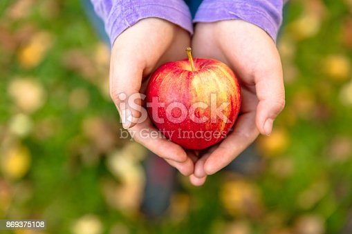 865889676 istock photo Girl in an orchard holding a red apple 869375108