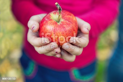 865889676 istock photo Girl in an orchard holding a red apple 956105720