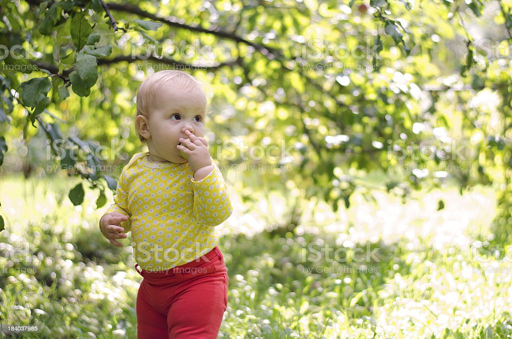 girl in apple orchard royalty-free stock photo