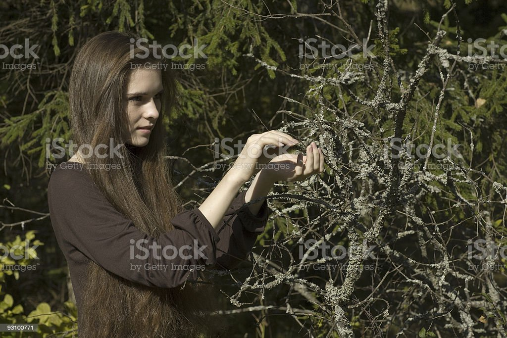 girl in autumn wood royalty-free stock photo