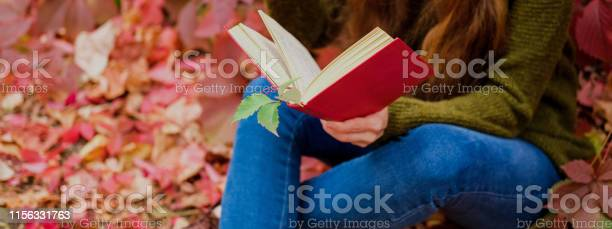 Girl in blue jeans sitting among colorful ivy in autumn and reading a picture id1156331763?b=1&k=6&m=1156331763&s=612x612&h=zfn5m5d6 9 yss15mwj37eykuimdyismp6oi5qbvugc=