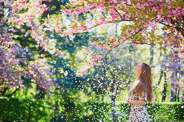 Girl in cherry blossom garden on a spring day picture id528300914?b=1&k=6&m=528300914&s=612x612&w=0&h=conjghrce4alyz2tzm9zo4rmlstxsotzvmmzetzgefs=