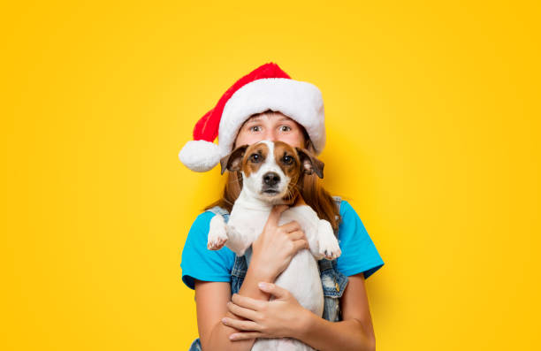 Girl in christmas hat with jack russell terrier dog picture id1025821296?b=1&k=6&m=1025821296&s=612x612&w=0&h=tkelrqbaryjqptahye onrqfwu alqnt0yunxlza ea=