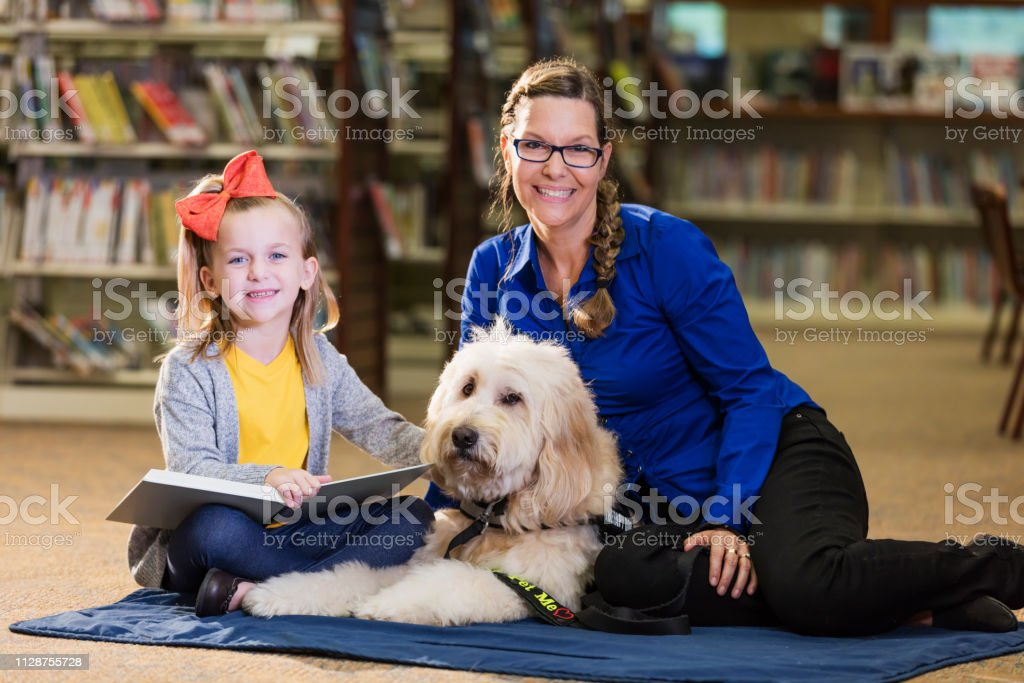 A little 6 year old girl reading in the library to a therapy dog, a...