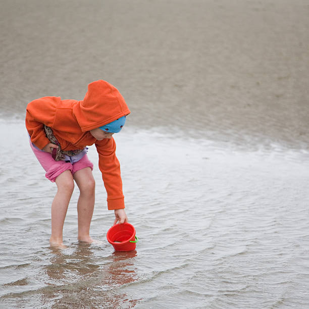 girl in orange at the beach, fishing and collecting - little girl picking up sea shells at the beach stock pictures, royalty-free photos & images
