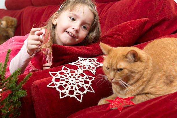 mädchen in rosa spielt mit katze, weihnachten, europa - kleinkinder kleid häkeln stock-fotos und bilder
