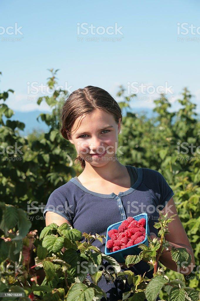 Girl in Raspberry Field royalty-free stock photo