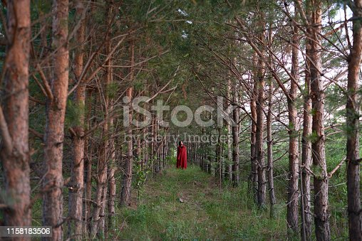 View of woman in red fabric standing alone among coniferous tree on alley in forest