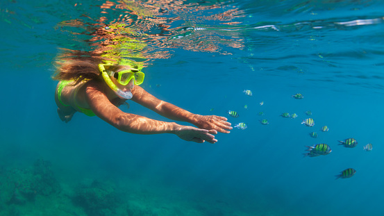 istock Girl in snorkeling mask dive underwater with coral reef fishes 666692640