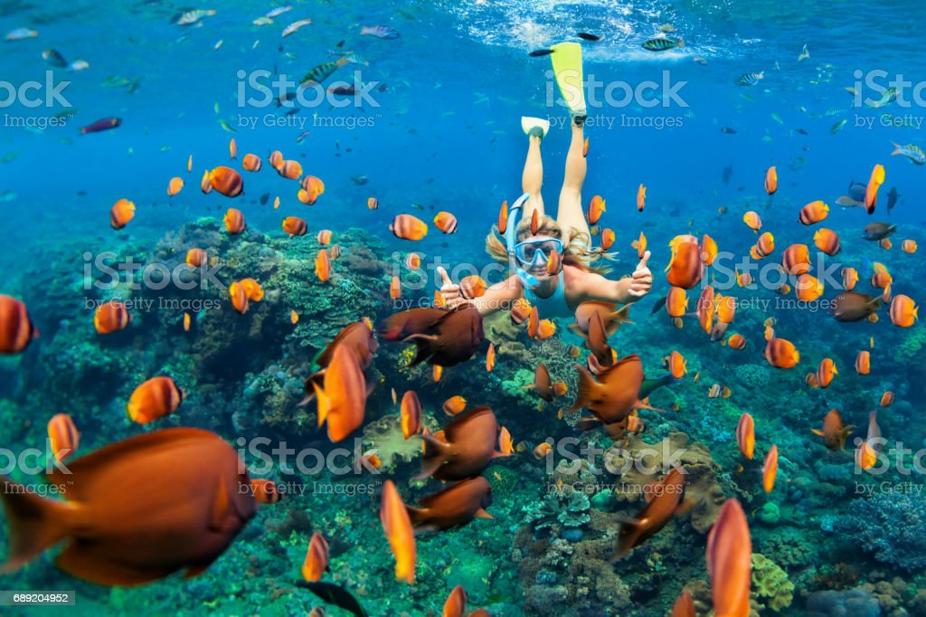 Girl in snorkeling mask dive underwater with coral reef fishes stock photo
