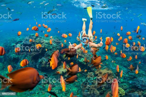 Girl in snorkeling mask dive underwater with coral reef fishes