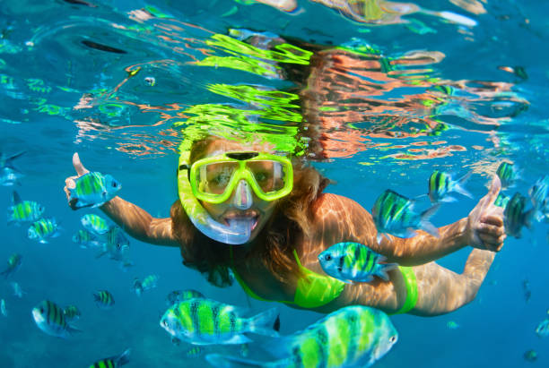 Girl in snorkeling mask dive underwater with coral reef fishes Happy family - girl in snorkeling mask dive with tropical fishes in coral reef sea pool. Travel lifestyle, water sports outdoor adventure, underwater swimming on summer beach holiday with kids. underwater diving stock pictures, royalty-free photos & images