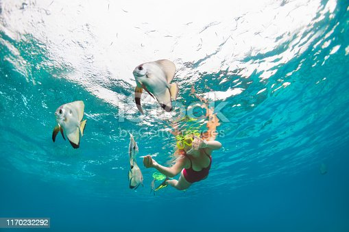 831127716 istock photo Girl in snorkeling mask dive underwater with tropical fishes 1170232292