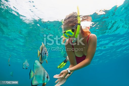 831127716 istock photo Girl in snorkeling mask dive underwater with tropical fishes 1170623666